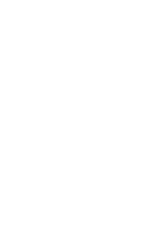 NSW Women Partners of Bisexual Men